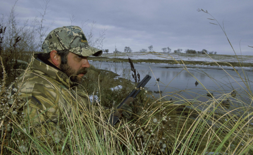 What Are The Gator Hunting Laws In Florida?
